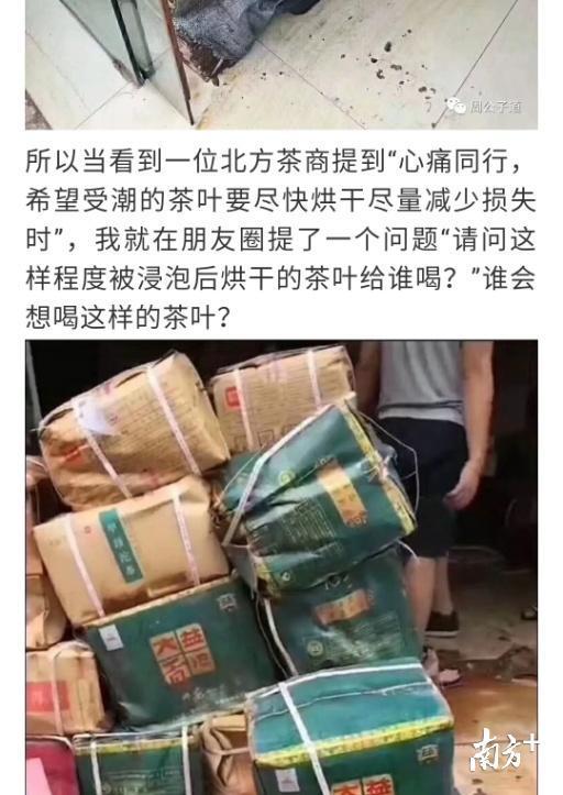 """""""山竹""""之后,茶叶损失百亿?过水茶叶再卖?全是谣言!"""