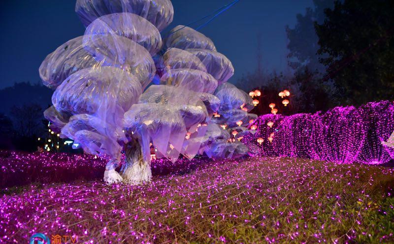 九龙坡:迎春灯饰流光溢彩点亮市街醉美公园