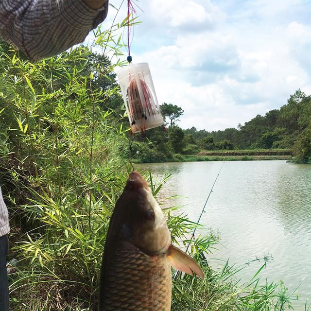 """假若你爱钓鱼,备上这新""""渔具"""",巨适合秋冬垂钓,爆护不叫事"""
