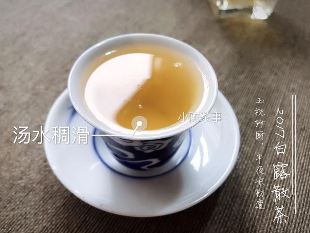 白茶入门该选择什么样的白茶?从零基础入门到晋级,完整分享!
