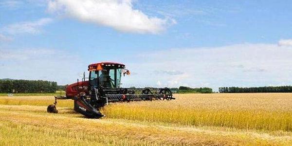 """减化肥、农药、除草剂今年黑龙江农业""""三减""""面积将达 4000 万亩"""