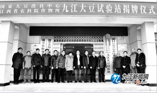 """""""九江大豆试验站""""落户湖口流芳乡 为豆参、豆豉等提供优质原材料"""