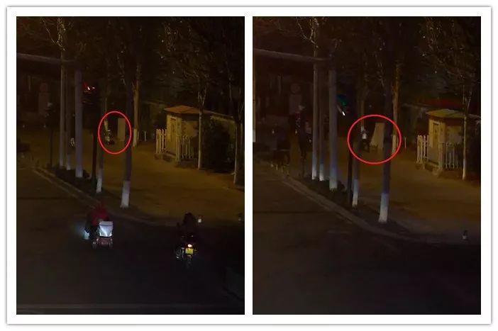 淄博一男子踹机箱,整个路口信号灯瘫痪...
