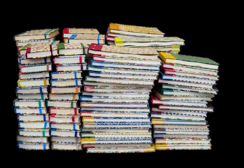 新闻即资源,抢先了解12月29日福州教育资讯