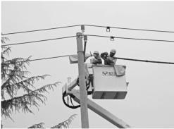 顺昌供电公司顺利完成首次自主带电作业。朱文琼摄