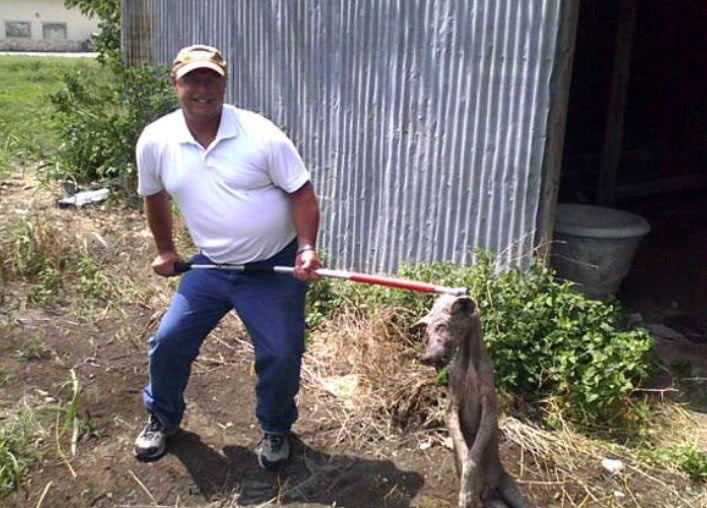 男子捕获到神奇生物,全身无毛,而且还吸食牲畜的血!