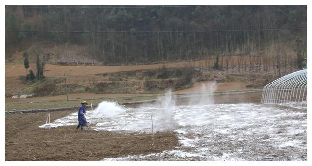 用生石灰来改善土壤时,有哪些注意事项?早看早受益