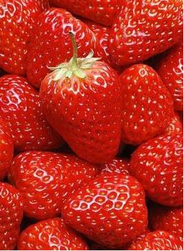 草莓用水冲是洗不净的,资深主妇教你1招,去农药杀虫子更干净!