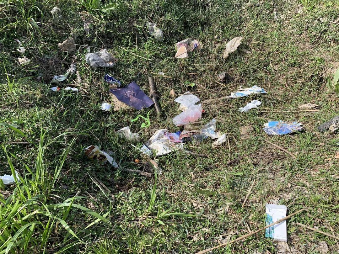 """小长假后,公共绿地成了垃圾场!苏州环卫工""""火了"""""""