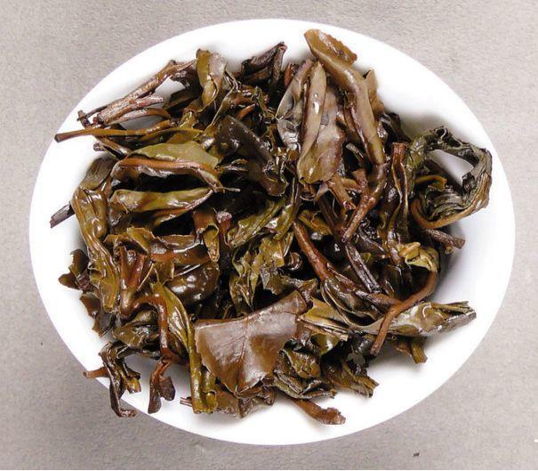 茶叶渣埋土里,不烂根不生虫,叶子油绿花开爆!