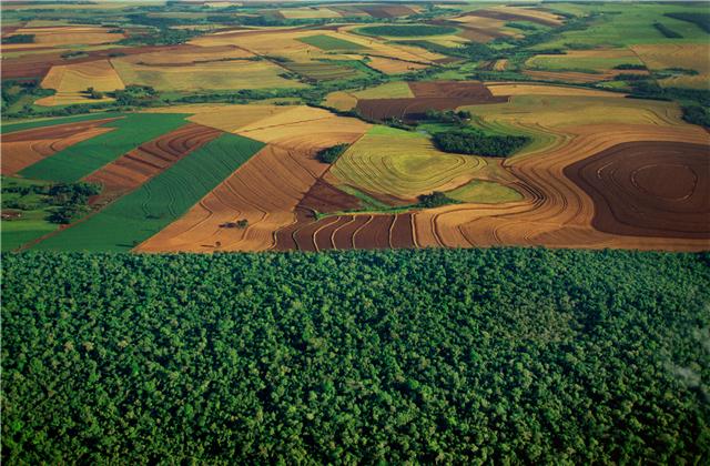 化肥虚标含量现象日益严重,农民被坑惨了