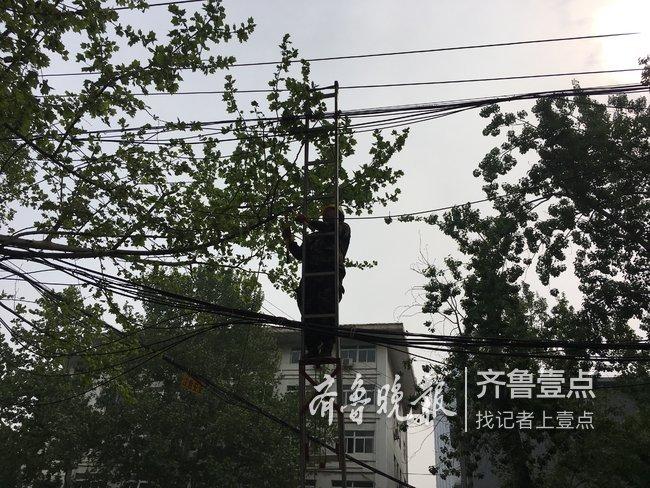 """线缆""""蜘蛛网""""无处遁形!济南已剪除线缆超36公里"""