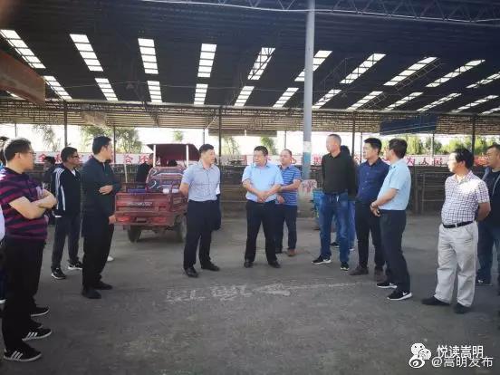 县领导在杨桥大牲畜市场召开扫黑除恶专项斗争整改现场工作会