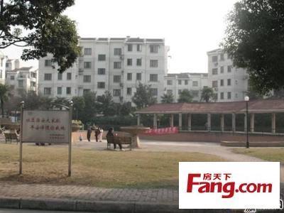 东风机械厂宿舍 PK 望湖派出所宿舍谁是包河区最热门小区?