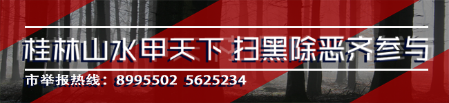 赵仲华到桂林国际线缆集团公司调研