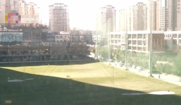 睡梦中玻璃窗发出巨响,一家人被惊醒出来查看,地上有颗高尔夫球