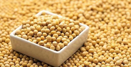 比猪肉营养价值高却便宜的大豆,嫩吃老吃随心吃!