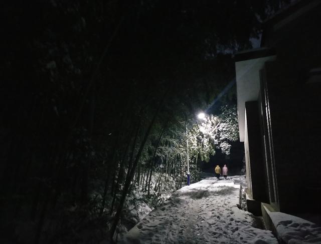 大雪天,冬夜里,农村路灯下的景色很美