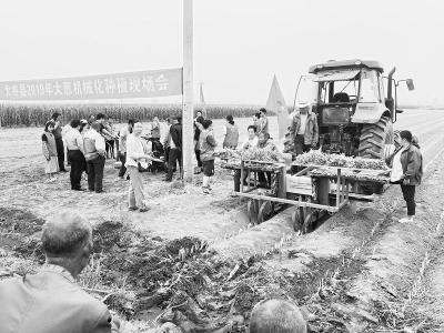 农谷建设正当时农业机械化更普及