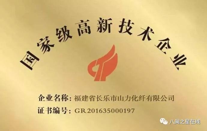 """山力化纤: 荣获省级龙头企业,陈仕清董事长荣获""""慈善标兵""""称号"""