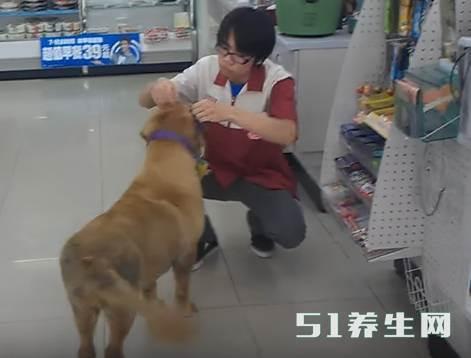 金毛进店就是一阵吼,看到它脖子的胶袋后店员秒懂_图2