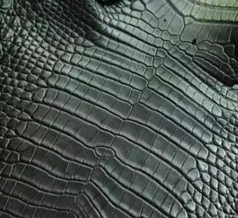 鳄鱼皮具,你真的了解吗?