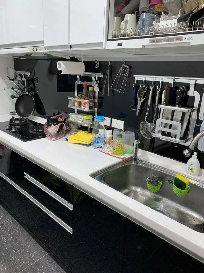 主人忘记把厨房的塑胶袋扔掉,过一会回来,里面长了一只猫!
