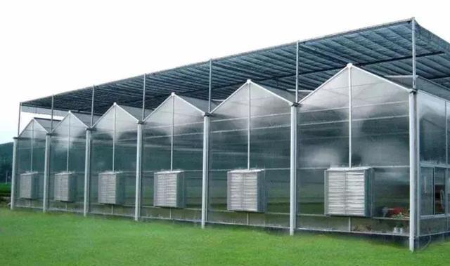 文洛式阳光温室结构说明