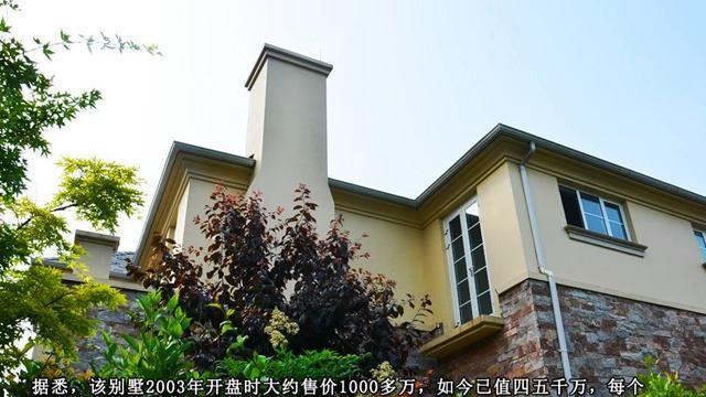 """""""国师""""张艺谋江苏豪宅,全屋多处石材堆砌,光装修就达到8位数"""