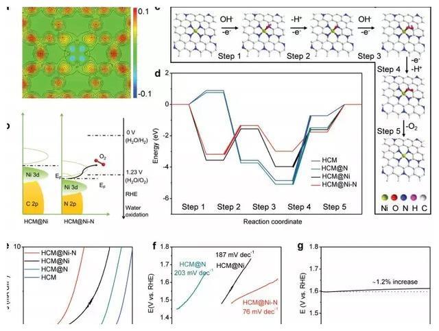 电催化析氧:原子级分散Ni催化剂上活性起源 楼雄文AM