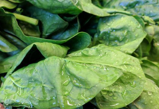"""土里撒把种子,长出满筐""""红嘴绿鹦哥"""",味道鲜美能吃好几茬"""