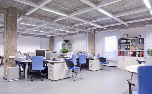 办公室风水禁忌 办公室植物风水摆放