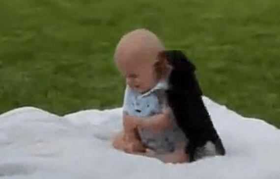 小狗把小宝宝当玩具,宝宝满脸无奈,最后模样太逗了!