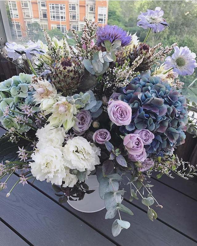 2块钱的小种子,3个月长满盆,阳台种花就选这4种!