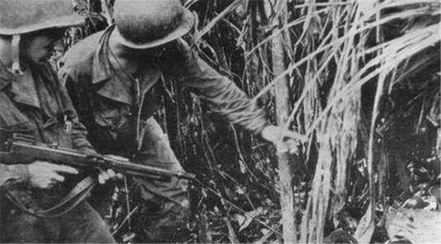二战时,千名日军与一动物搏斗,日军差点全军覆没