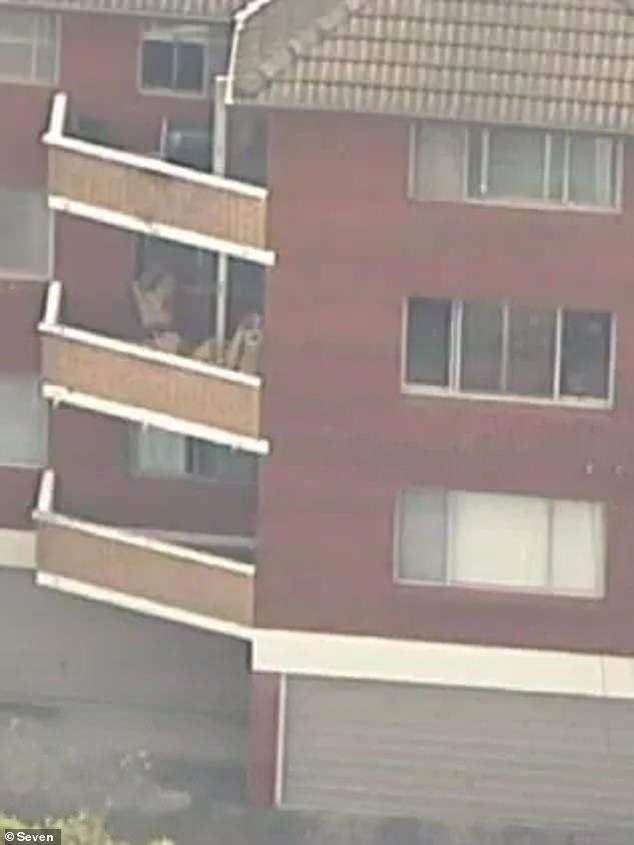 窗边玩耍时纱窗突然弹开,澳洲2岁男娃从3楼坠下,母亲当场休克