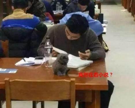 """大学生去图书馆,竟将这个""""违禁物""""带入,管理员竟不指责?"""