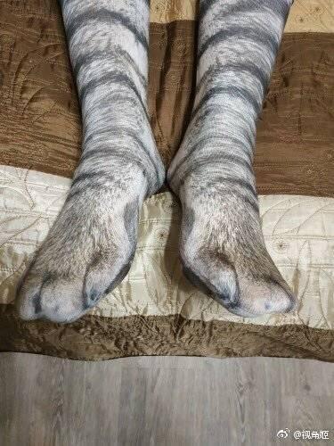 网友买了双猫咪风的袜子,穿上跟真的一样