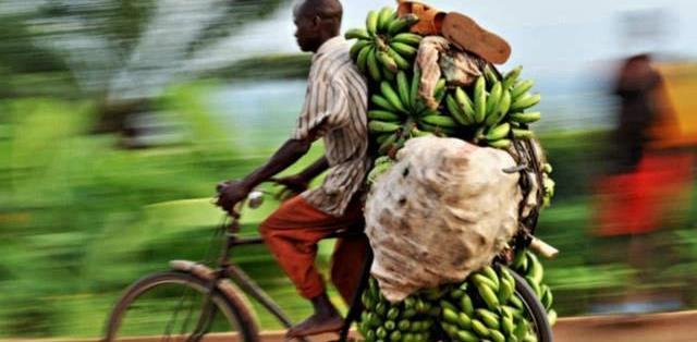 """中国""""淘汰""""的交通工具,非洲用处大,当地人:拥有一辆太棒了"""