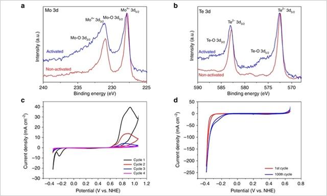 碲化钼催化剂助电解水制氢量翻番