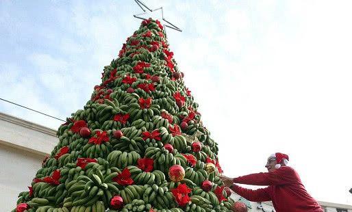 当水果遇上圣诞节,榴莲圣诞树登场,网友:我躲远点