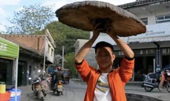 男子野外捡到大雨伞,叫村里人来看,结果老人的话让他脸色大变