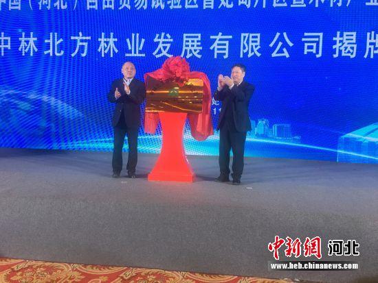 中国(河北)自由贸易试验区曹妃甸片区暨木材产业推介大会举行