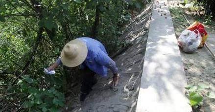 捡破烂老汉意外河中捞到木头,木材商人竟高价买走,秒变富豪