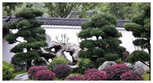 私家庭院设计——别墅庭院绿化风水和景观石的应用
