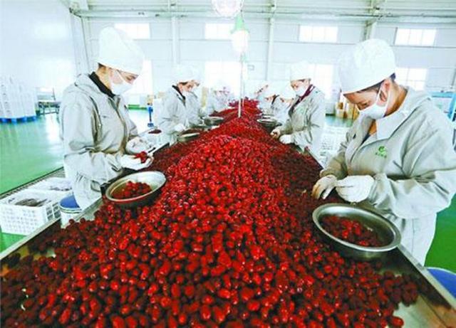 2020年新疆农产品加工业产值要1.6倍以上于农业产值