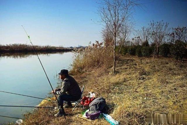 冬季钓鱼这三种饵料最好用,每次至少能钓20条,但渔具店里难买到