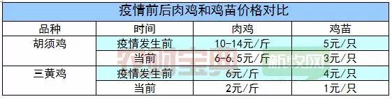 广东肉鸡销量下降超30%,家禽业单月损失或超5亿元 | 农财数读