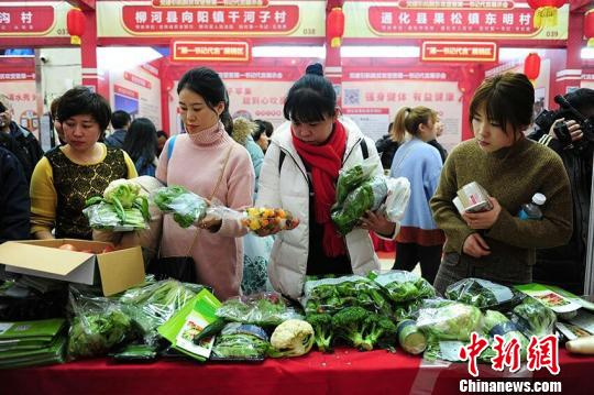 吉林百名第一书记走到前台 为贫困村农产品代言