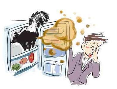 """冰箱""""异味""""可真大,家政阿姨告诉我4招,异味变没还有果香!"""